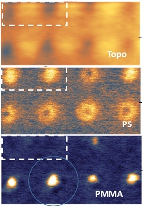 Figure 3 PiFM images of DSA structure from a different region reveal that defects can be identified with the aid of PiFM even though AFM topography shows similar features as structures without defect.