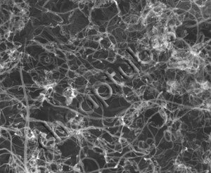 An SEM Image of Our Multi Walled Carbon Nanotubes