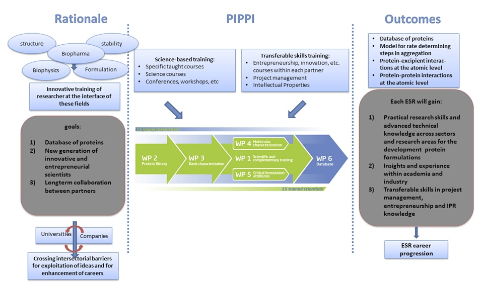 Overview of the PIPPI research and training program.