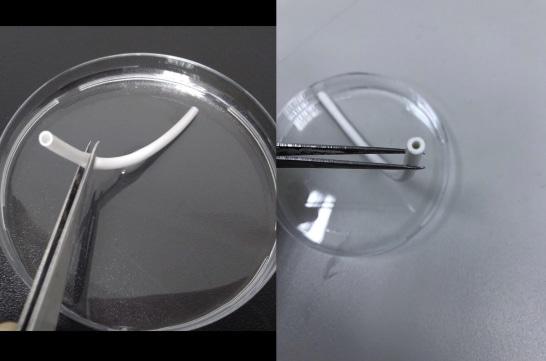 The electrospun TPU vascular graft with a diameter of 3 mm.