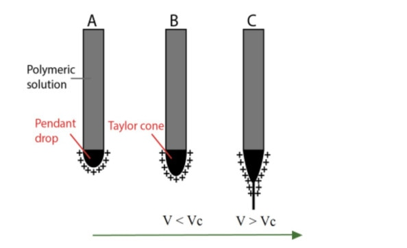 Schematic illustration of the Taylor cone and jet formation: (A) the applied electric field creates surface charges in the polymeric solution; (B) increasing the voltage the drop is elongated; (C) when the voltage is higher than VC, the polymeric jet is formed and travels towards the collector due to the charge repulsion (Casasola, R. (2016)).