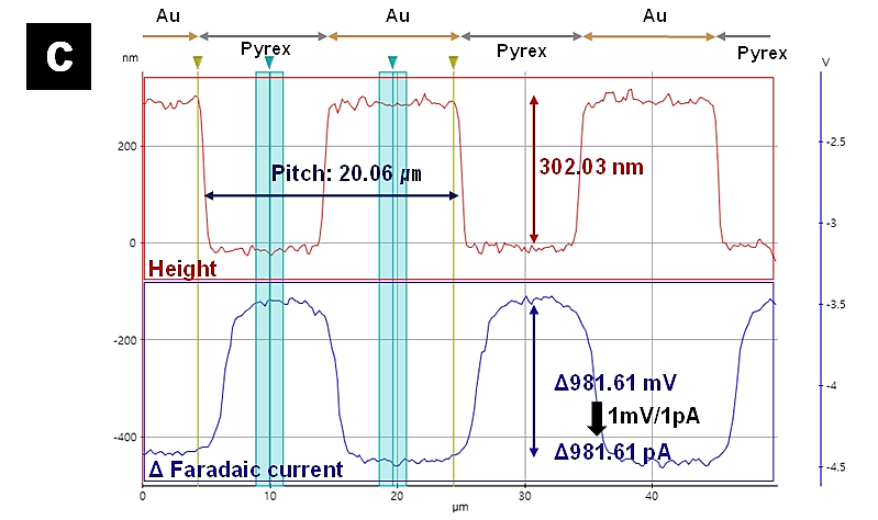 c) Line profile along the line seen in a) and b). Image size: 50 µm × 25 µm.