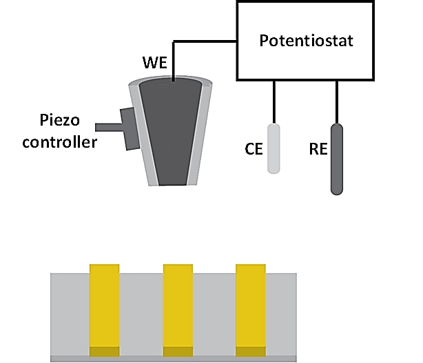 SECM schematic illustration. The electrochemical cell consisted of a working electrode (WE), a counter electrode (CE) and a reference electrode (RE). The bath solution contains supporting electrolyte and an electrochemically active species. During SECM operation, the WE is biased at a sufficient potential at which the redox reaction of the electrochemically active species occurs. By scanning the probe at a constant-height away from the underlying substrate while recording the faradaic current response, the electrochemical activity of the surface can be obtained.