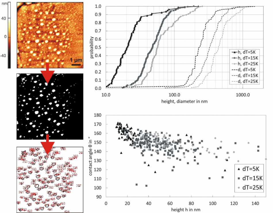 Evaluation of nanobubbles on a rough hydrophobic surface via ImageJ by binarization (a certain threshold has to be chosen), geometrical size distributions of nanobubbles, and dependency of contact angle on height for different temperature gradients.
