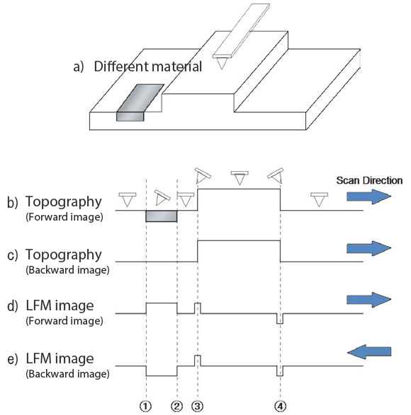 (a) Schematic illustration of the sample of interest, (b) Cantilever deflection during scanning, (c) Line scan of topographical signal; Line scan of LFM signal when scanning from left to right (d) and right to left (e).