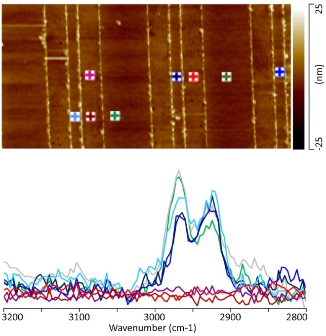 (a) 10 µm X 5 µm AFM topography image illustrating the regions from which the AFM-IR spectra were collected. Note the color of the marker corresponds to the color of the individual spectra. (b) AFM-IR C-H stretch spectra from the patterned a-SiOC:H/Cu interconnect.