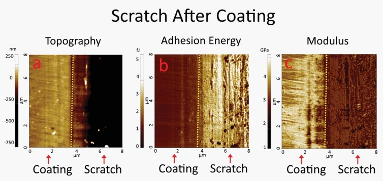 PinPoint™ nanomechanical mode images of a glass substrate when the scratch was created after a coating was applied. The contrast between the coating area and the scratched area is clearly visible in both adhesion energy and modulus images.