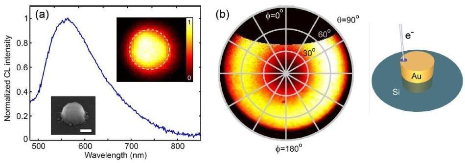 Understanding Plasmonic Nanoantennas
