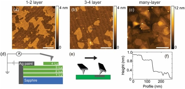 (a-c) AFM topography images of the samples studied. (d) Schematic of C-AFM setup used to measure multilayer MoS2 on a sapphire. (e) Cartoon demonstrating how the cantilever twists as it scans over a high friction region. (f) Cross section of topography which corresponds to the black line in (b) demonstrating 0.6nm step at the MoS2 island edge and 0.2 nm step at the sapphire terrace. Every image is plotted in Gwyddion. Scale bar is 500 nm.