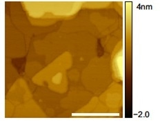 STM image of multilayer MoS2/sapphire.Cut Pt-Ir wire in constant current mode.