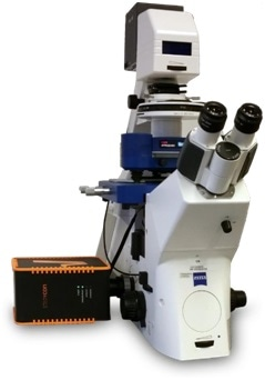 JPK NanoWizard® AFM family integrated with a compact line STEDYCON (Abberior Instruments), on an AxioObserver (Zeiss).
