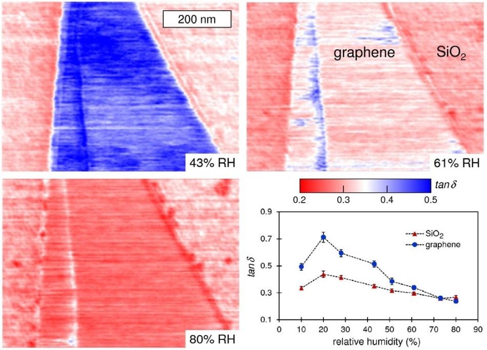 Investigating interfacial phenomena in graphene