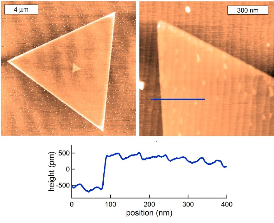 Controlling MoS2 crystalline orientation in CVD processes