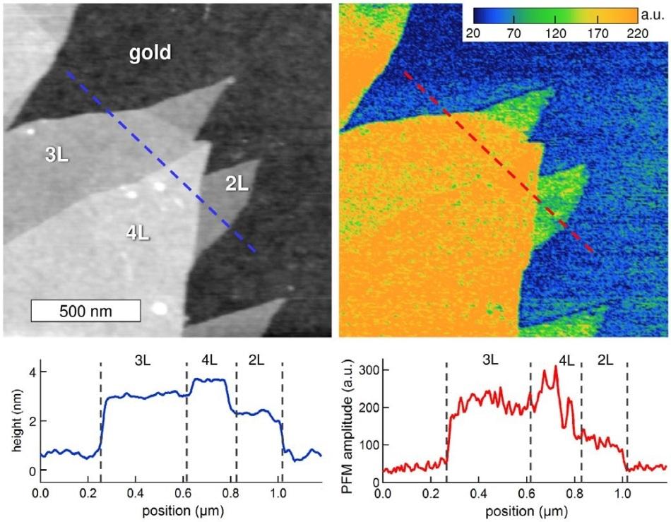 Evaluating room-temperature ferroelectricity in CuInP2S6 (CIPS)