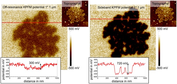 The same F14H20 aggregate was imaged using off-resonance and sideband KPFM. Cross sections (red) show improved lateral and potential resolution of sideband KPFM.