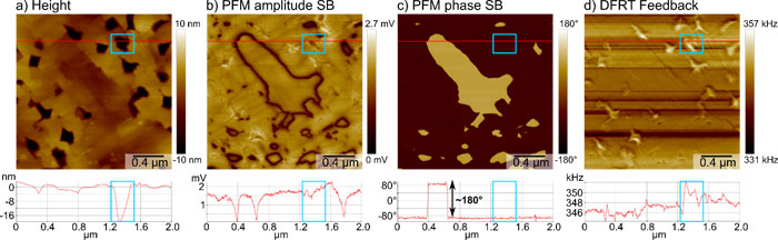 Results of vertical DFRT PFM measurement on a BFO sample. a) Sample topography in the height channel with line profile extracted along the red line. Exemplary hole outlined by blue box in image and profile. b), c) PFM amplitude and phase measured on the second sideband (SB) at f1+f1mwith an amplitude of 1 V, resolving the position of the domain walls and the domain orientation, respectively. The line profiles extracted along the red line show amplitude minima at the domain walls and a full 180° phase contrast, as well as minimal topographic crosstalk (blue box). d) Frequency signal of the DFRT feedback imaged the compensated frequency shifts introduced by holes in the topography (blue box)