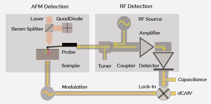 Block diagram of the SCM/AFM design