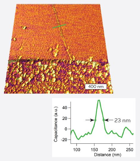 CNT on insulating substrate. Capacitance data overlaid on 3D topography.