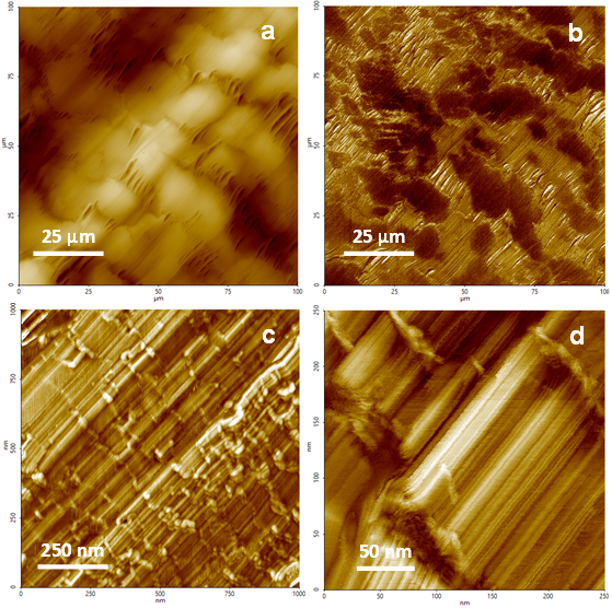 Large-scale height and phase tapping mode images of a Teflon surface.