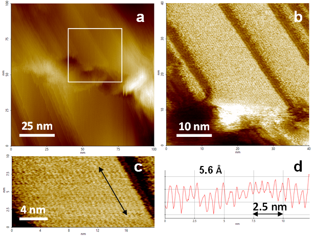 High resolution AFM images of a Teflon surface showing single PTFE molecules.