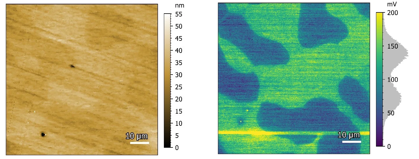 Stainless Steel. The left image is an 80 x 80 µm2 topography image while right image shows the KPFM signal collected simultaneously.