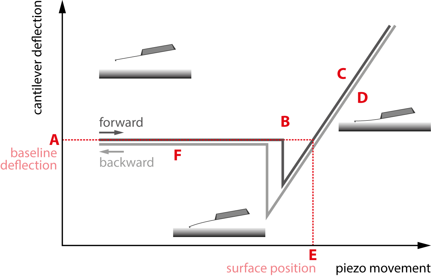 A standard force curve. The different regions of interest are marked A through F.