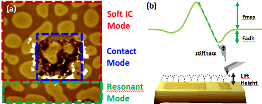 Soft Intermittent Contact - An Important AFM Mode