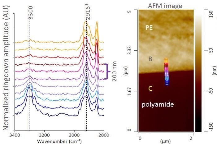 AFM height image and AFM-IR spectra across PE/PA layer interface