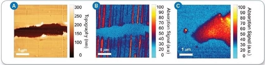 a) AFM topography imaging of CNTs deposited on polystyrene substrate; (b) IR chemical mapping image at 4000 cm-1 showing absorption by CNTs; (c) IR chemical mapping image of monolayer graphene captured at 4000 cm-1.