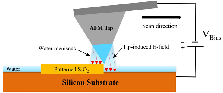Schematic illustration of Bias-Assisted AFM Nanolithography [4, 5].