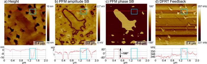 Results of vertical DFRT PFM measurement on a BFO sample. a) Sample topography in the height channel with line profile extracted along the red line. Exemplary hole outlined by blue box in image and profile. b), c) PFM amplitude and phase measured on the second sideband (SB) at f1+f1m with an amplitude of 1 V, resolving the position of the domain walls and the domain orientation, respectively. The line profiles extracted along the red line show amplitude minima at the domain walls and a full 180° phase contrast, as well as minimal topographic crosstalk (blue box). d) Frequency signal of the DFRT feedback imaged the compensated frequency shifts introduced by holes in the topography (blue box)