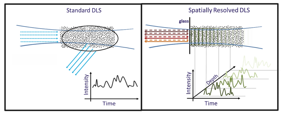 Conventional DLS versus Spatially Resolved-DLS. Left: Standard DLS detects only an average scattering signal Right: SR-DLS detects scattered light fluctuations resolved as function of depth.