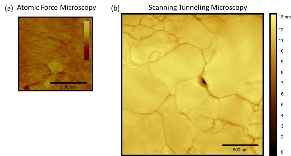 (a) AFM and (b) STM image of ultra-flat gold surface from Platypus Technologies.