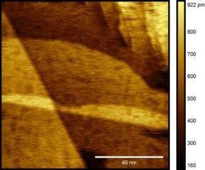 High-resolution STM image of ultra-flat gold surface reveals uniform gold terraces