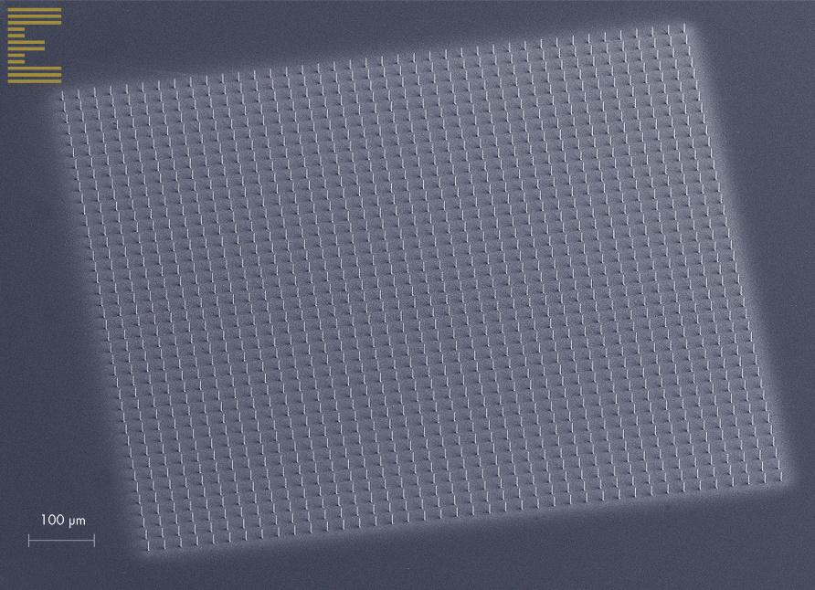 1600 pillars printed on a 1 mm x 1 mm grid. Each pillar is ~1.6 µm Ø.