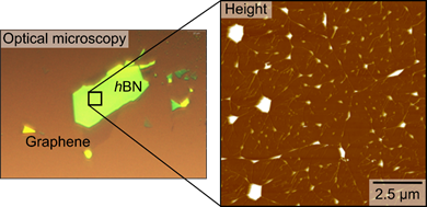 Optical microscopy image of a graphene flake stacked on top of a hBN flake with a large are height image of the graphene topography. Sample courtesy: Dr Ziwei Wang, The University of Manchester (www.artem-lab.com).