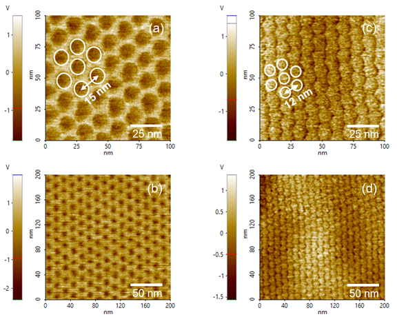 PFM amplitude images. Honeycomb Moiré patterns with periodicity 15 nm on monolayer graphene/hBN (a) and (b), and with periodicity 12 nm on twisted bilayer graphene/hBN (c) and (d).