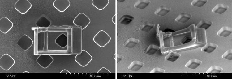 Contamination formed on a silicon wafer sample during 2 hours of continuous electron beam bombardment. The left image was taken with 60° sample tilt and the three-dimensional structure of the contamination can be observed.