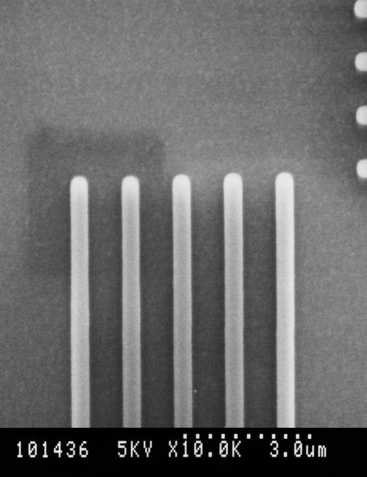 Tilt wafer SEM. Minimal contamination mark on a polysilicon sample after treatment, 15 minutes dwell time at 30,000x magnification, at 5 kV.