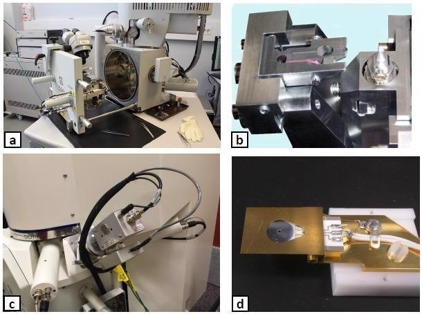 The hardware utilized for SBFSEM experiments: (a) a typical SBFSEM system, (b) details of the Gatan 3View microtome, (c) the Evactron® EP plasma cleaner mounted on the Zeiss Sigma SEM chamber, (d) a contaminated backscatter detector.