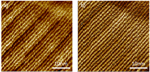 Automatic Atomic Force Microscopy (AFM) with the FX40
