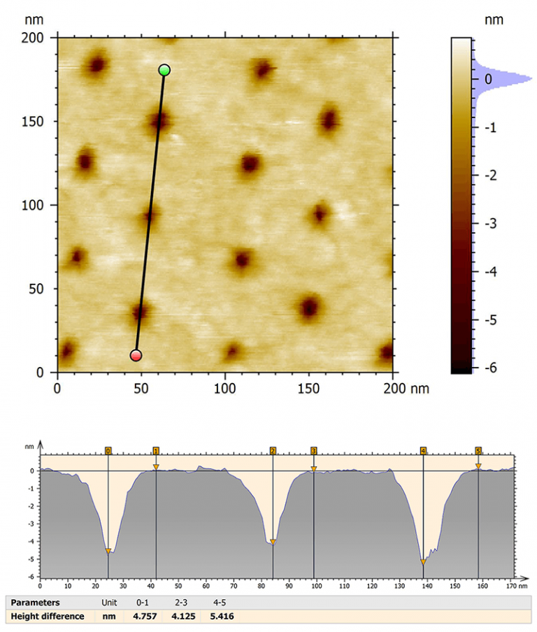 AFM was used to obtain height information on the sample and check the depth of pores.