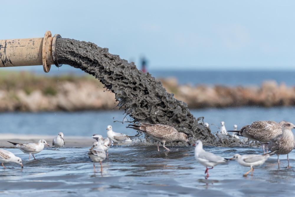 sludge polluting water