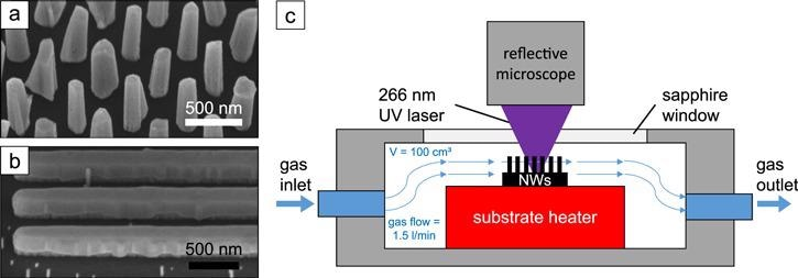 (a) SEM image of GaN NWs on a Si substrate and (b) GaN nanofins on an AlN substrate in 45°-tilted view. (c) Sketch of the measurement chamber with gas flow and resistive heater.