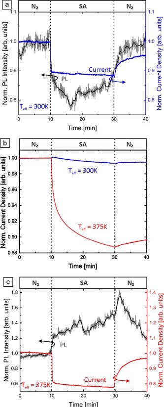 Normalized NBE PL intensity and normalized current density of GaN NFs on an AlN template under illumination with 266 nm light at (a) 300 K and (c) 375 K. The atmosphere was changed from dry N2 to dry SA and back under constant applied voltage (1 V) and excitation intensity (18 kW cm-2). (b) The normalized current density of GaN NFs at 300 and 375 K in the dark. Due to the sake of argument (c) is discussed later in the text.