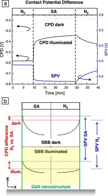 CPD of anm-plane bulk GaN plate in the dark and under 340 nm illumination with an excitation intensity of 6 mW cm-2. The atmosphere was changed from dry N2 to dry SA and back. (b) Schematic drawing of the band bending at a GaN NS surface (green line) in SA (left) and N2 (right) atmosphere at room temperature. The dashed/solid black lines represent the SBB in the dark/under illumination. The red lines illustrate the CPD differences between SA and N2 atmosphere in the dark (upper part) and under illumination (lower part). The corresponding SPV in SA and N2 are indicated in blue.