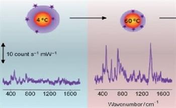 Responsive Microgel Composite Colloids for Plasmonic Sensing