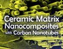 Ceramic Matrix Nanocomposites with Carbon Nanotubes