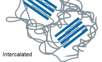 SAXS on Polymer Clay Nanocomposites Using the N8 HORIZON