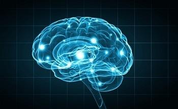 Nanotubes To Make Better Brain Probes - New Technology